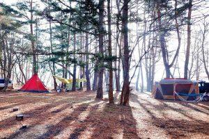 最新のキャンプ