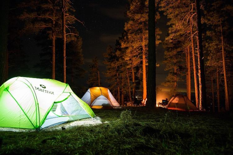 林の中のテント