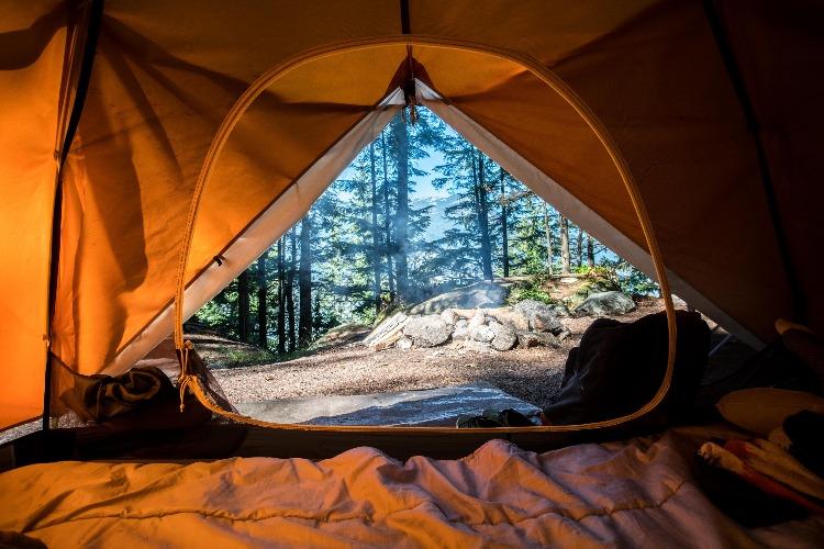 テントの内側からの風景